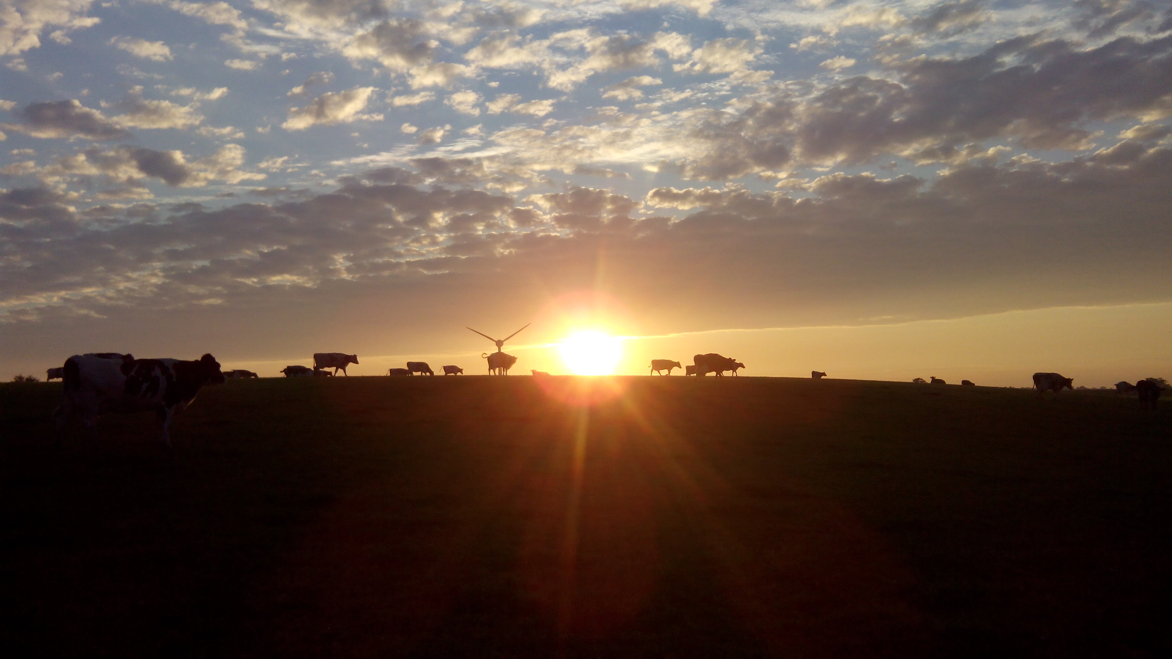 Early Morning Farm 02 by Chefalton on DeviantArt